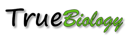http://truebio.ru/wp-content/uploads/2013/04/logo-e1357484115704.png